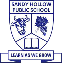 Sandy Hollow Public School logo